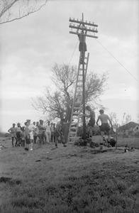 ROYAL NAVY HELPS IN MAURITIUS REHABILITATION WORK. MARCH 1960, MAURITIUS. THE CRUISER HMS GAMBIA HELPING IN REHABILITATION WORK FOLLOWING TWO DISASTROUS CYCLONES WHICH STRUCK THE BRITISH ISLAND OF MAURITIUS IN THE INDIAN OCEAN.