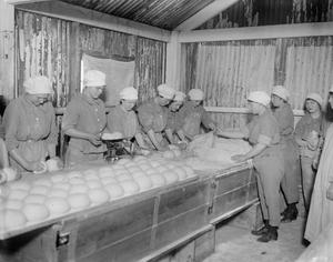 THE WOMEN'S ARMY AUXILIARY CORPS ON THE WESTERN FRONT, 1914-1918