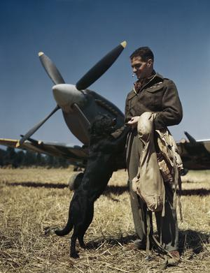 WING COMMANDER JAMES E 'JOHNNY' JOHNSON AT BAZENVILLE LANDING GROUND, NORMANDY, 31 JULY 1944