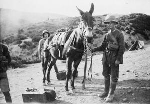 SERVICE OF THE 7TH BATTALION, SOUTH WALES BORDERERS, IN MACEDONIA, 1916-1918.