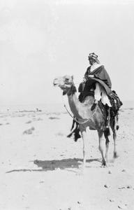 THE FIRST WORLD WAR 1914 - 1918: PALESTINE AND THE MIDDLE EAST