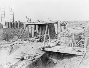 THE SECOND OPIUM WAR 1856-1860