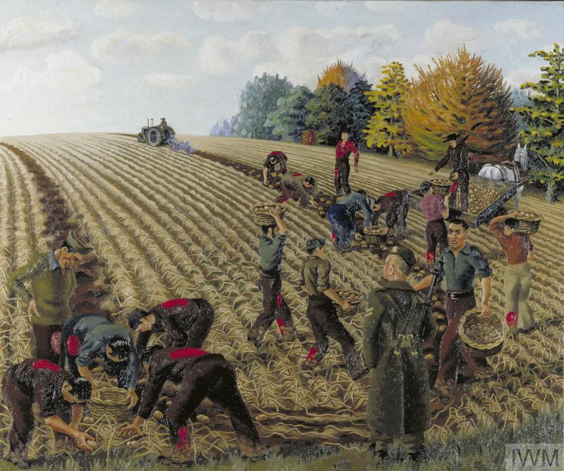 View across an onion field in autumn with sixteen Italian prisoners-of-war gathering in the crop, supervised by a single British soldier at the near edge of the field. The PoWs are wearing clothing marked with a distinctive red spot on the jackets and trousers. On the horizon a tractor loosens a furrow of earth for the prisoners to gather the crop into wicker baskets. On the right stands a horse and cart where the crop is being loaded.