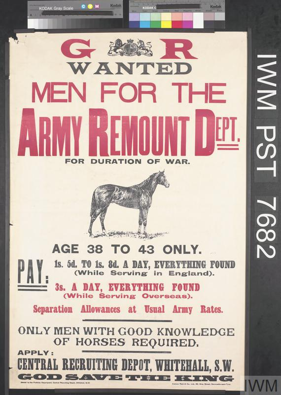 Wanted - Men for the Army Remount Department