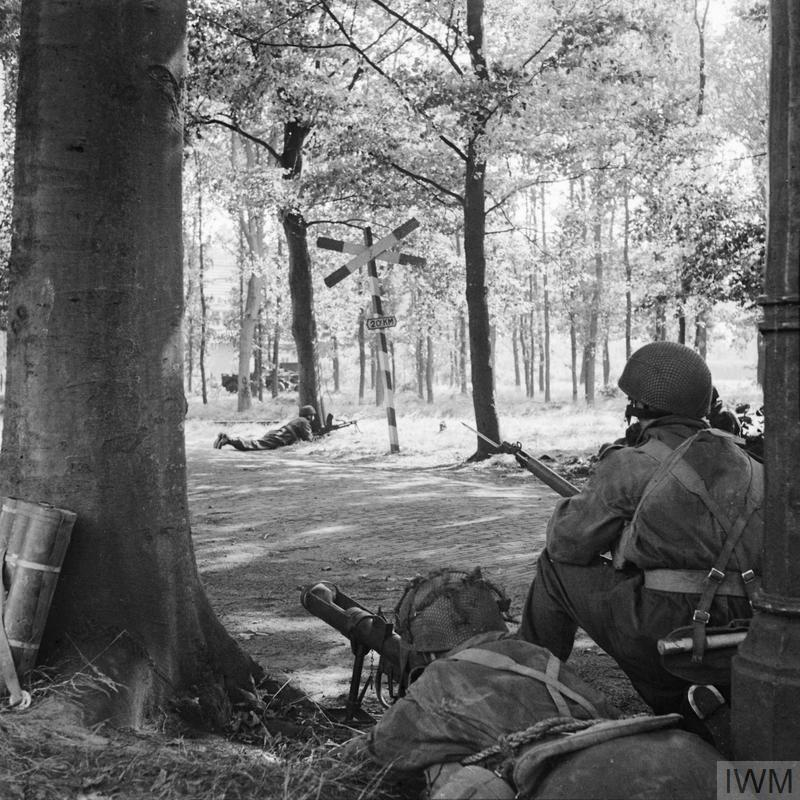 "A Piat gun of ""C"" Troop, 1st Airlanding Reconnaissance Squadron, in position behind a tree covering a road near Wolfheze, 18 September 1944."