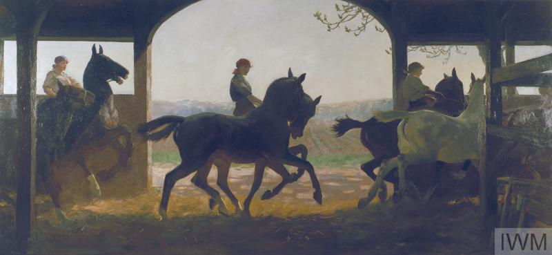Three women exercising horses in a remount depot. They take their charges through their paces in an indoor straw- ride. Each woman rides one horse and leads another.