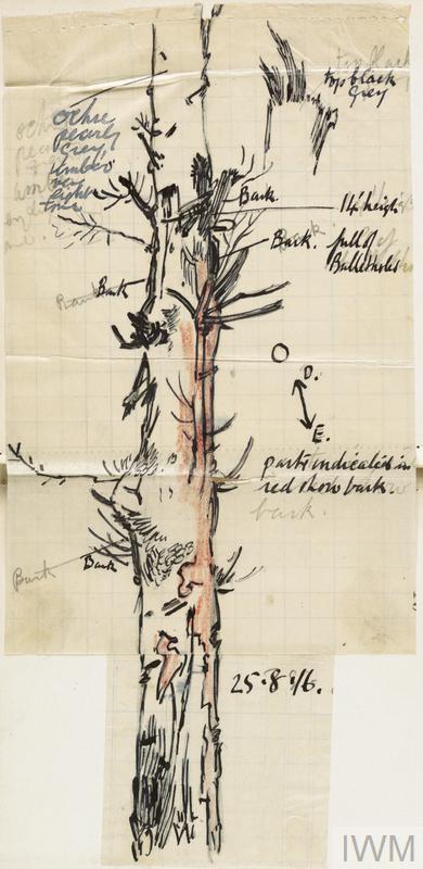An artist's sketch.