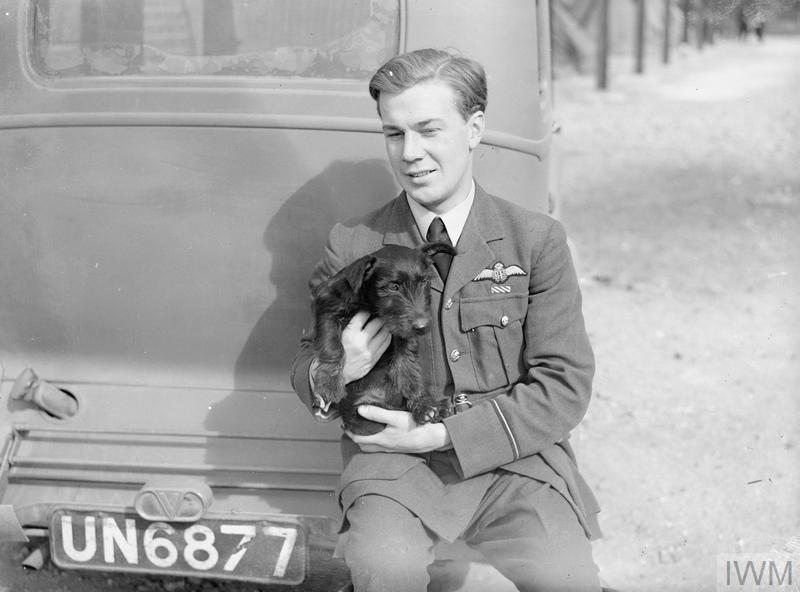 Flying Officer Leonard Haines of No. 19 Squadron with pet dog sitting on the rear bumper of a car at Fowlmere, September 1940.
