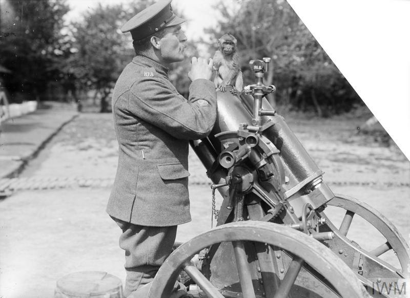 Captured German Trench Mortar at the Third Army Trench Mortar School, St Pol (Saint-Pol-sur-Ternoise), 20th May 1917. The monkey mascot of the School is shown.