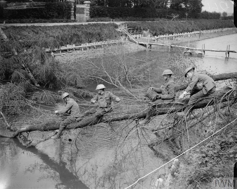 WWI, 5 May 1918; Royal Engineers wiring fallen trees on