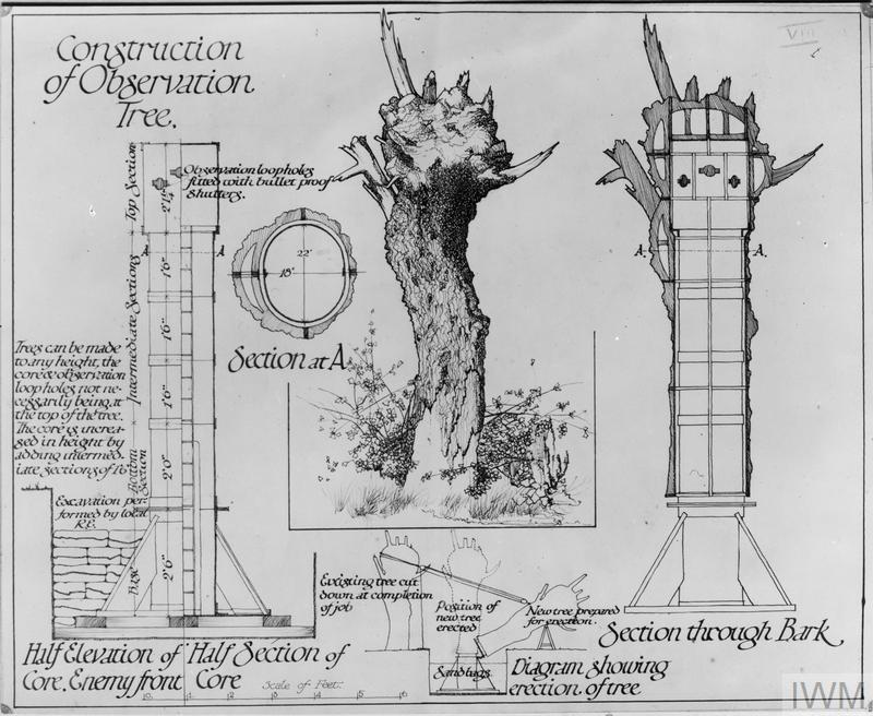Plan of a dummy tree observation post.