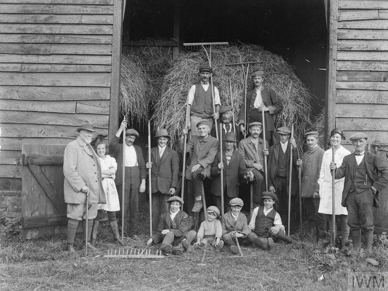Farm hands, boys and girls and German prisoners on a Suffolk Farm, 1918.