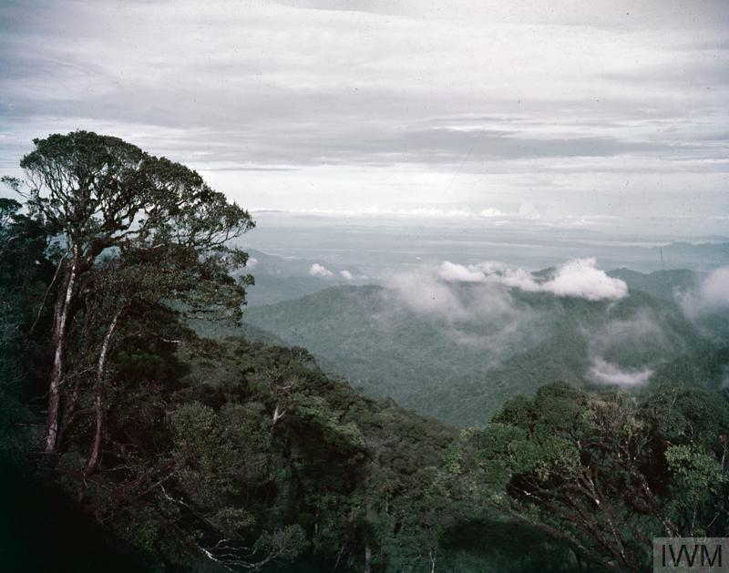 A VIEW LOOKING OVER THE CAMERON HIGHLANDS, MALAYA (CIRCA 1950s).