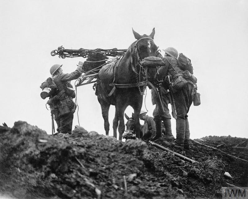 A pack horse with a gas mask is loaded up with equipment during the Battle of Pilckem Ridge, Belgium, 31 July 1917.