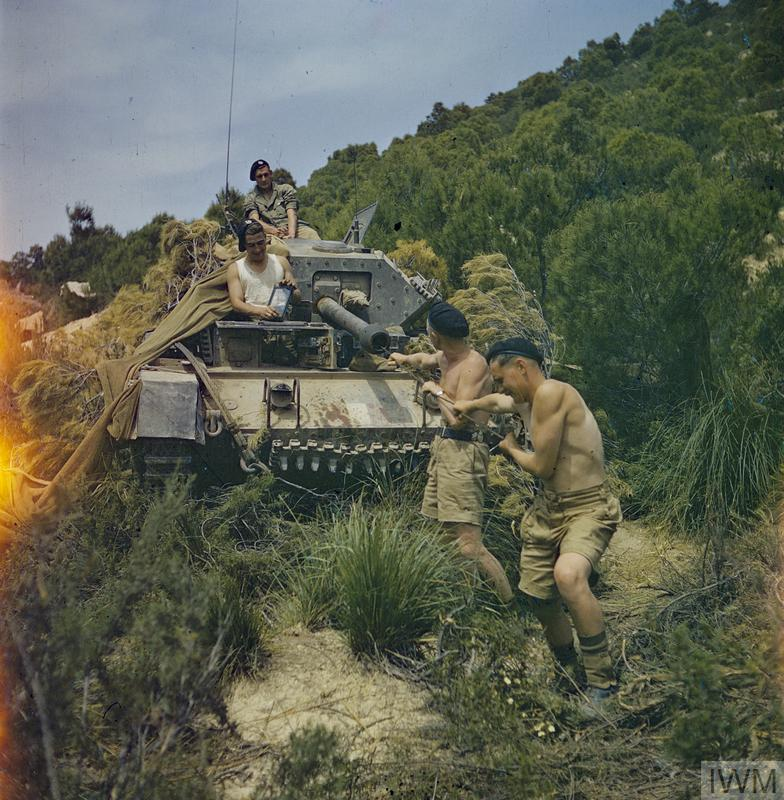THE BRITISH ARMY IN NORTH AFRICA, 1943: THE DRIVE ON TUNIS