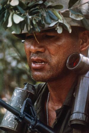 THE VIETNAM WAR 1962 - 1975 (CT 205)