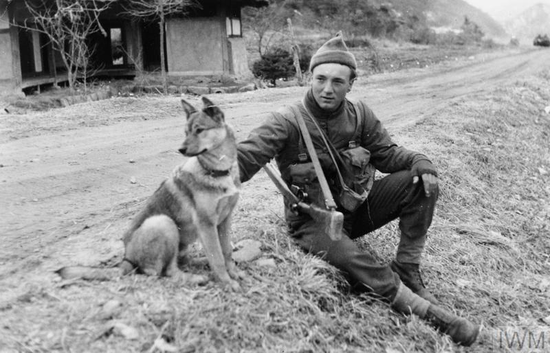 Private John Rudd of the 1st Battalion, Middlesex Regiment sitting at the roadside in a Korean village with his dog, which has been trained for guard duties.
