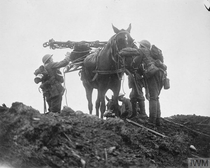 Battle of Pilckem Ridge. British troops loading a pack horse with wiring staples. Note the horse's gas-mask. Near Pilckem, 31 July 1917.