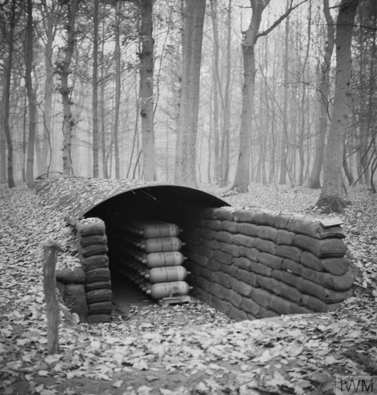 CHEMICAL WARFARE IN THE TWENTIETH CENTURY: THE SECOND WORLD WAR