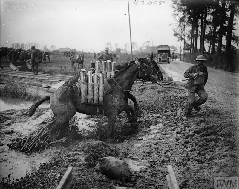 Battle of Pilckem Ridge. Two pack mules carrying shells struggle through the mud near Ypres, 1 August 1917.