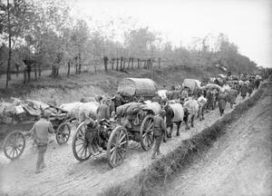 Oxen-drawn transport and artillery of the Serbian Army during its retreat from Morava to the Adriatic Sea coast, November-December 1915. THE RETREAT OF THE SERBIAN ARMY TO ALBANIA, 1915