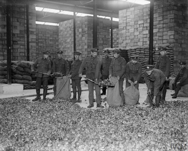 Troops loading onions into sacks from a large pile in a store house, Calais.