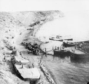 THE GALLIPOLI CAMPAIGN, APRIL 1915-JANUARY 1916