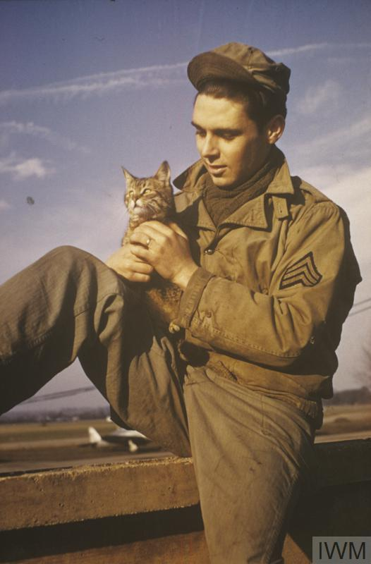 Sergeant Bill Pulliam, 91st Bomb Group, with his cat, Cross-Eyes. Image © Artist's Estate.