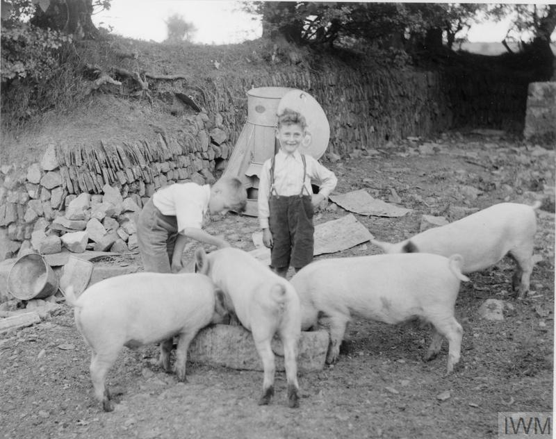 EVACUEES FROM LONDON IN PEMBROKESHIRE, WALES, 1940