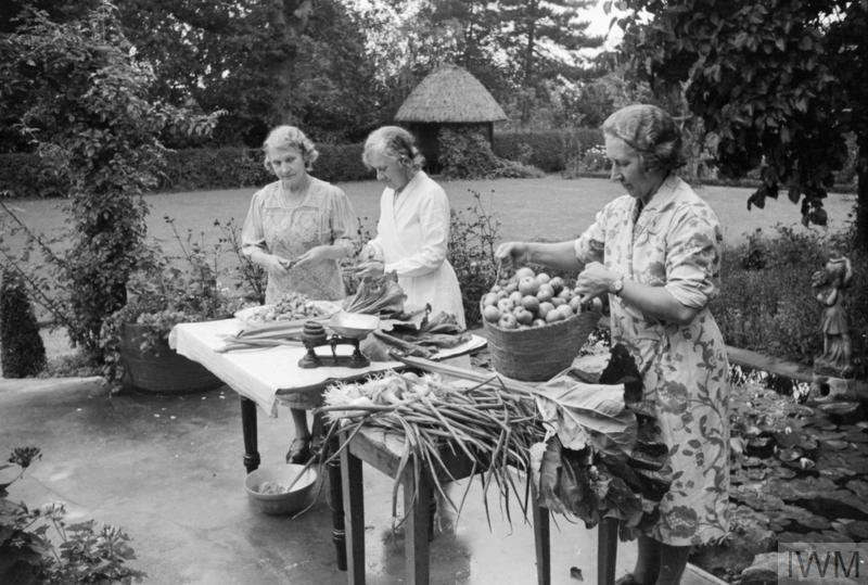 Members of Springfield Women's Institute (WI) make chutney at a table set up in the garden of the rectory. Bringing the apples, on the right of the photograph, is Mrs Vigne, the leader of the group. Apples, rhubarb and onions are all grown in members' gardens or on allotments.