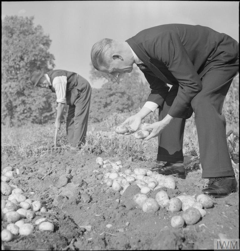 THE GARDENS OF KEW: THE WORK OF KEW GARDENS IN WARTIME, SURREY, ENGLAND, UK, 1943