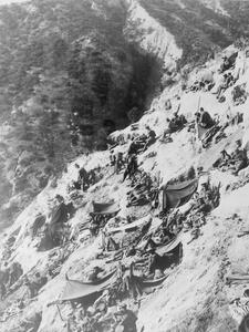 AUSTRALIAN FORCES IN GALLIPOLI, 1915