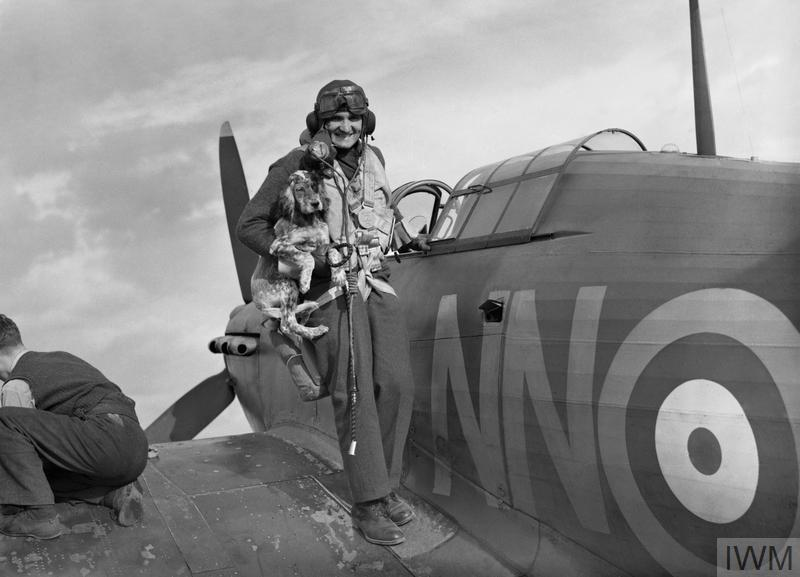 Sergeant Bohumil Furst is greeted by his squadron's mascot on returning to RAF Duxford after a mission.