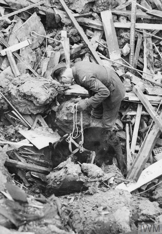 Jet searching for victims on 13 November 1944.