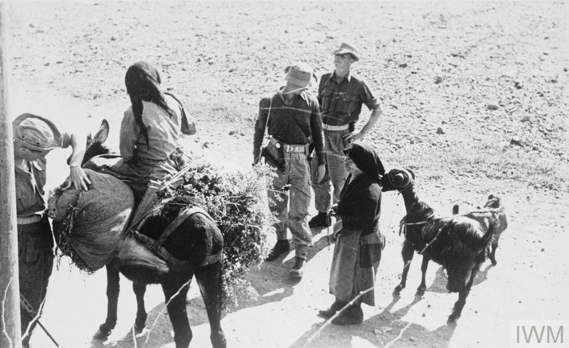 Men of the 1st Battalion, The Royal Ulster Rifles search loads carried on a donkey at a road block during the EOKA Emergency in Cyprus.