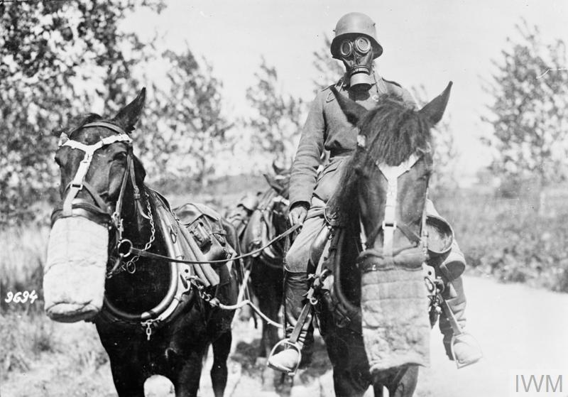 A German transport driver wearing a gas mask riding a horse.