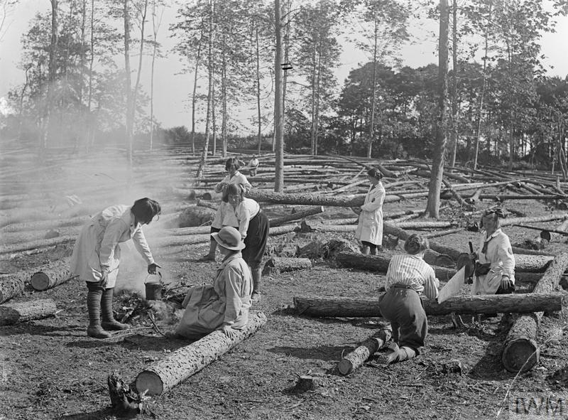 Members of the Women's Land Army Forestry Corps prepare a meal in an area surrounded by fallen tree trunks in the United Kingdom during the First World War.
