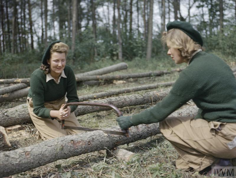 Land Army girls sawing larch poles for use as pit props.