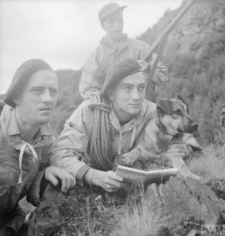 Commando troops, members of a first party to reach the cliff top, with their dog during training exercises in mountain terrain, probably in Scotland, 20 August 1943.