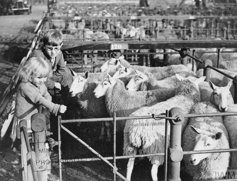 THE CIVILIAN EVACUATION SCHEME IN THE SECOND WORLD WAR