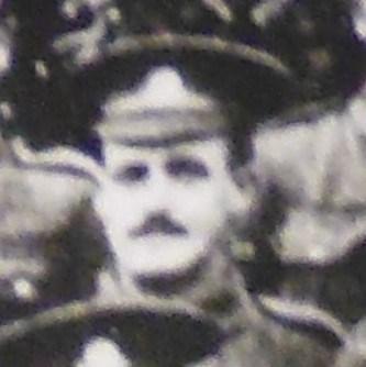 Profile picture for William Dodd