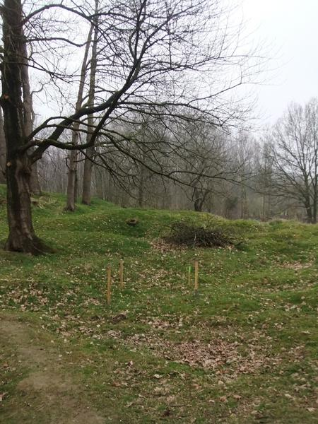 Hill 60, where Edward earned his VC