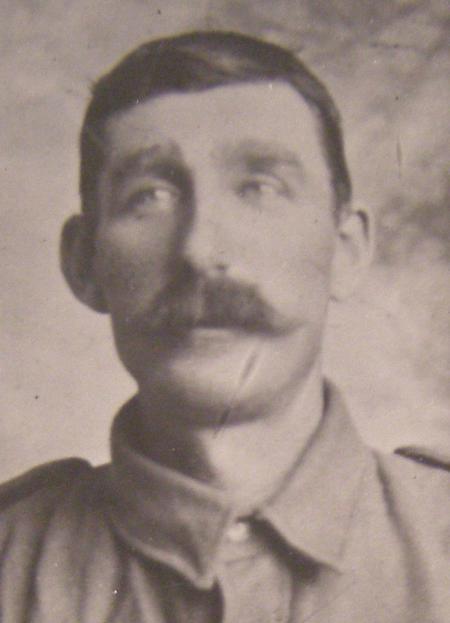 Profile picture for William Alfred Wilson
