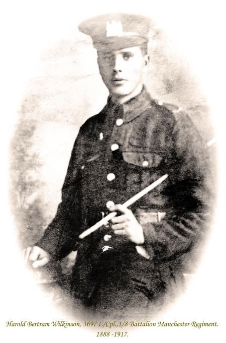 Profile picture for Harold Bertram Wilkinson