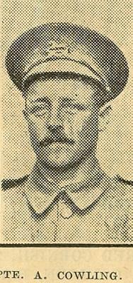 Profile picture for Allan Cowling