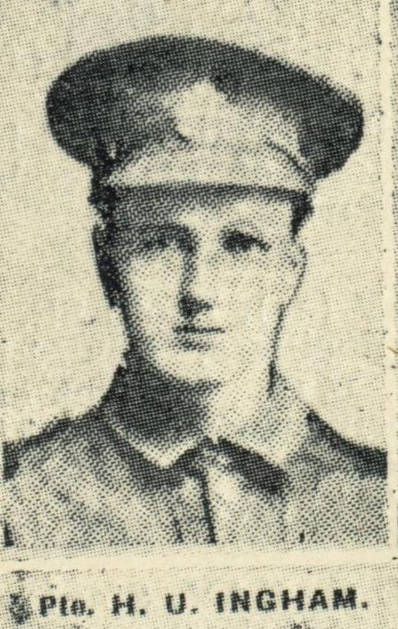 Profile picture for Hermann Unwin Ingham