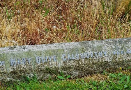 Olive's grave today-sadly neglected