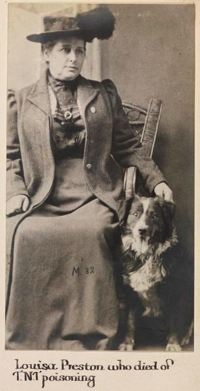 Profile picture for Louisa Preston