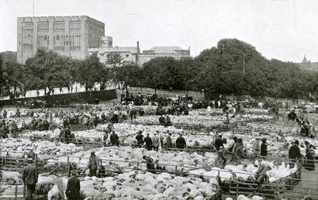 norwich castle and cattle market 1910