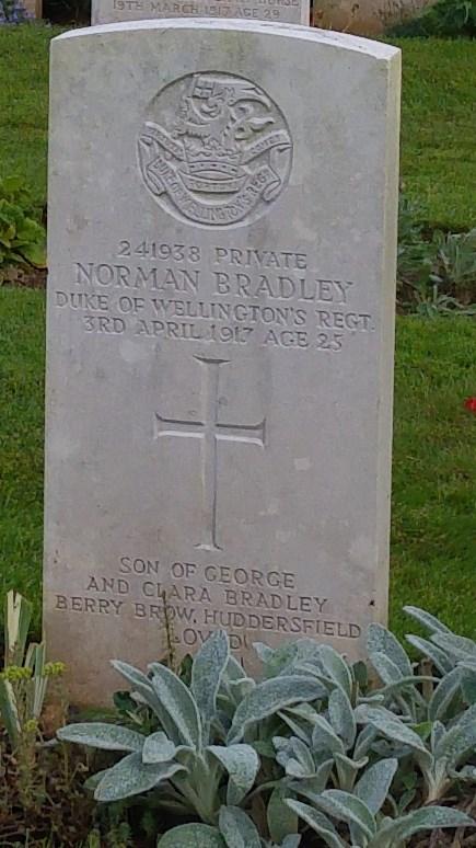 Profile picture for Norman Bradley